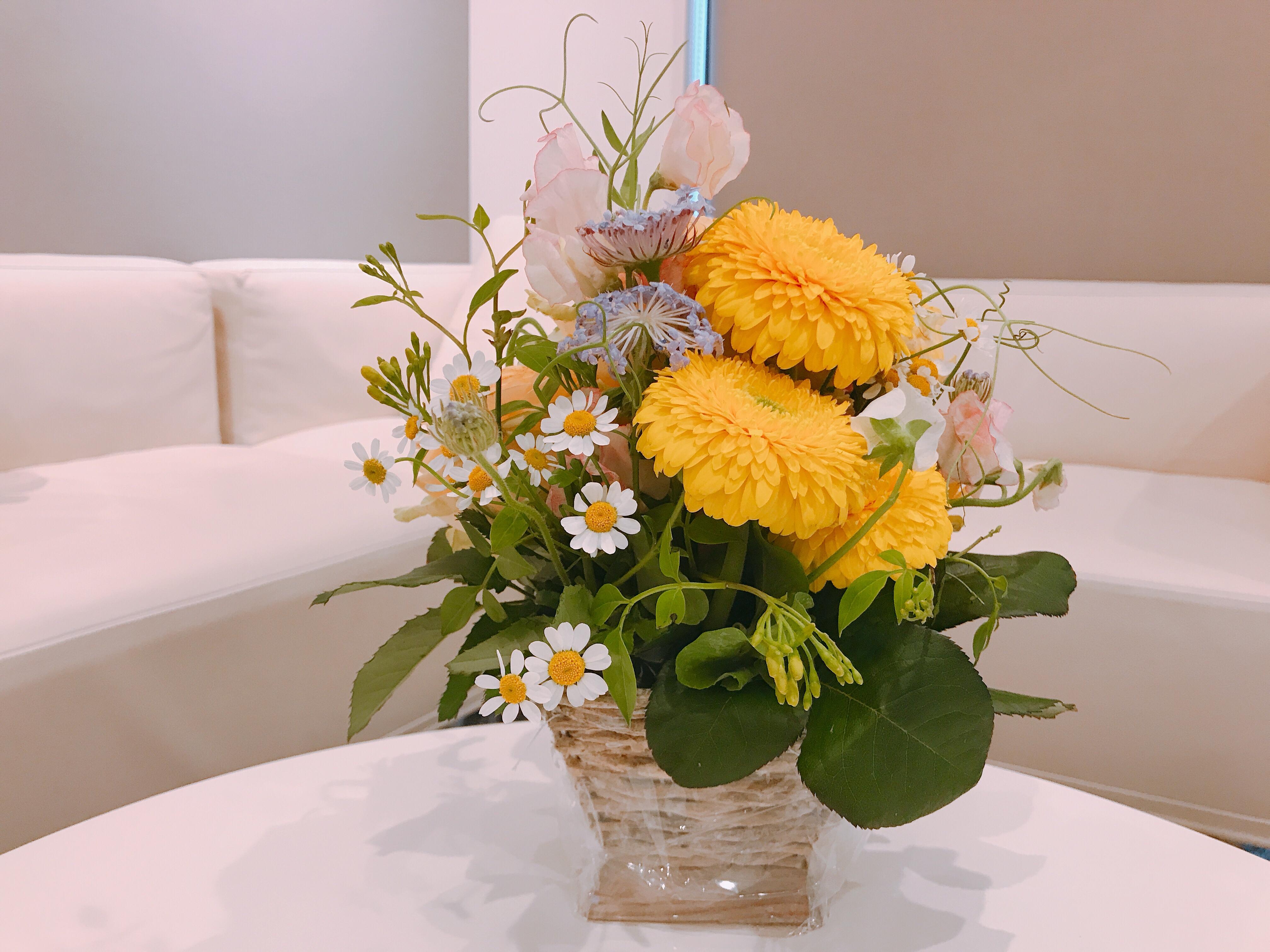 種をまき、花が咲く過程で大切なこと。